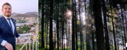 La nostra foresta per Giuseppe