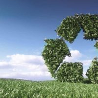 La gestione dei rifiuti in relazione al D.Lgs. 116/20