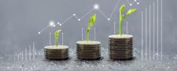 Criteri ESG e investimenti sostenibili, sfide e prospettive: cosa sono e perché il green vince