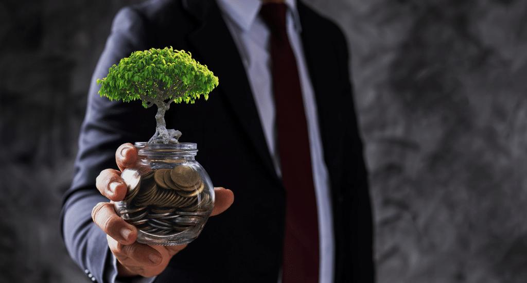 Corsi di formazione in materia di Transizione Green ed Economia Circolare